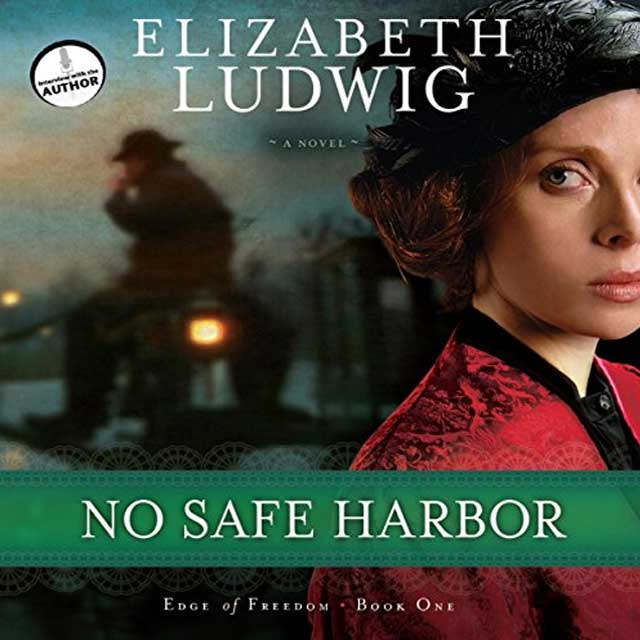 No Safe Harbor - Audible Link